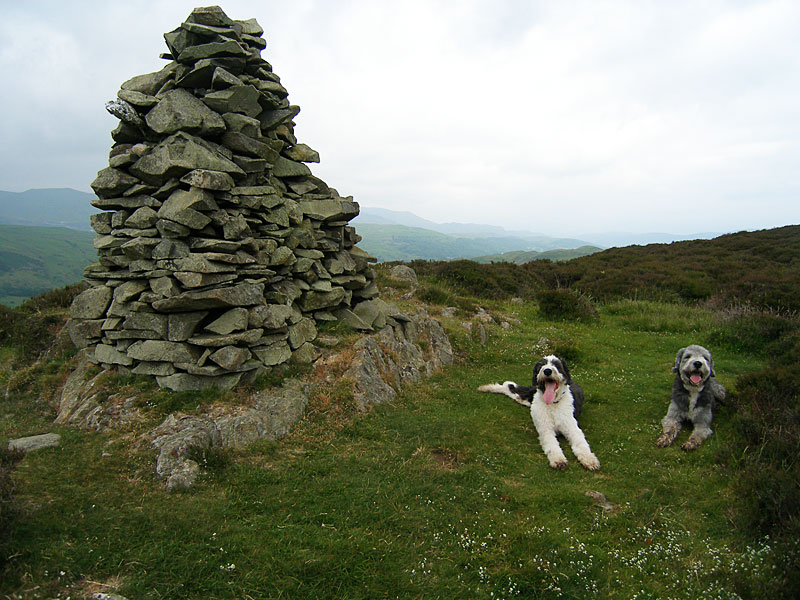 The summit of Yew Bank