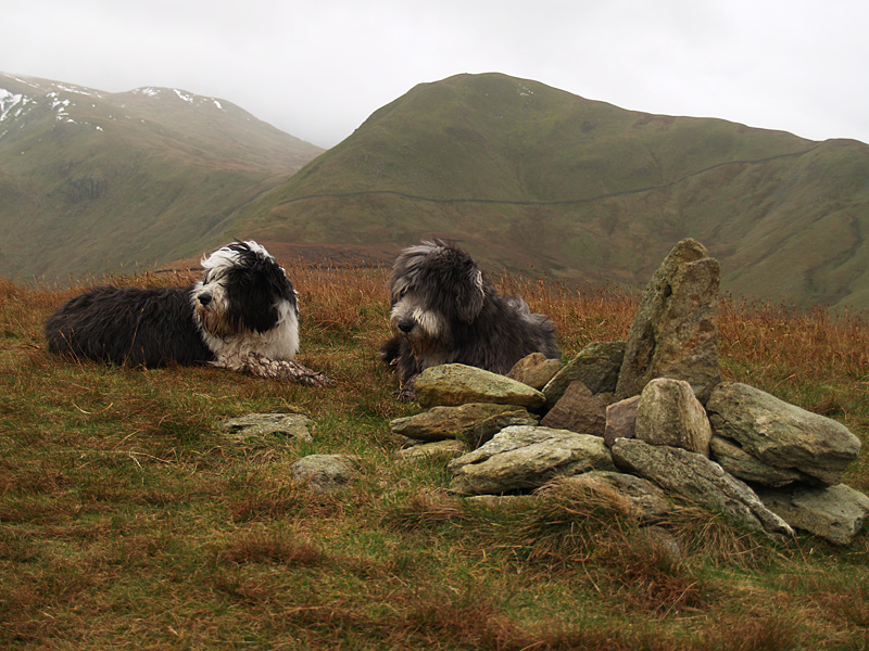 Having a rest on The Nab