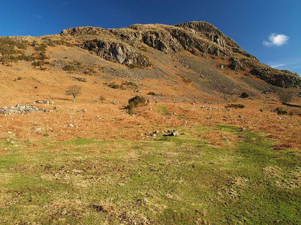 Buckbarrow from Buckbarrow farm