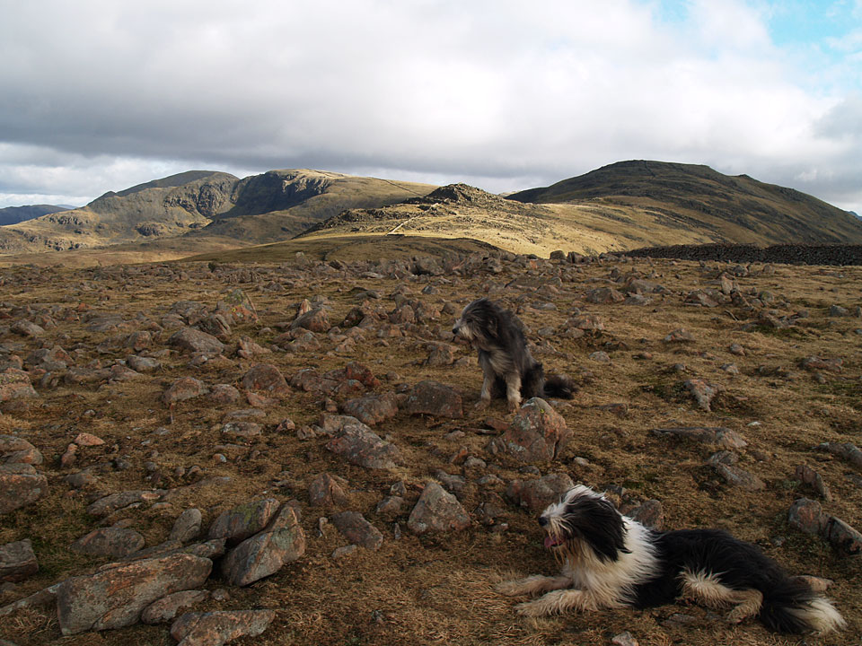 Angus and Casper take a breather on the summit
