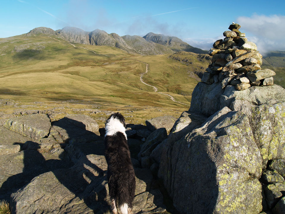 Crinkle Crags and Bowfell from the summit of Cold Pike