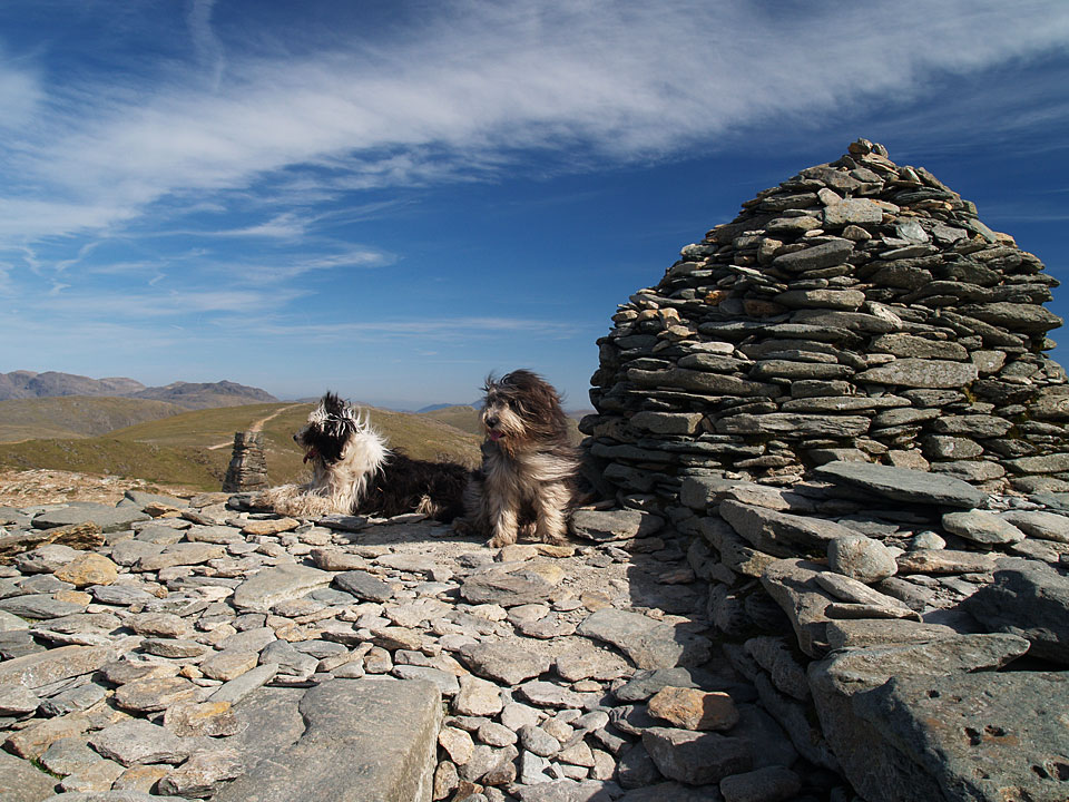 Casper and Angus on the summit