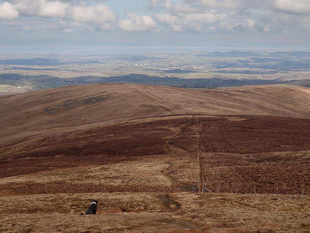 Burnbank Fell