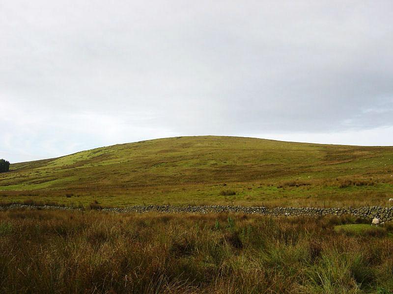 Ponsonby Fell from Blengdale Forest