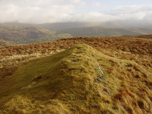 Sallows summit mound