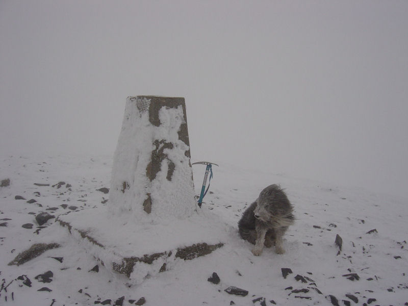 White Out on Skiddaw