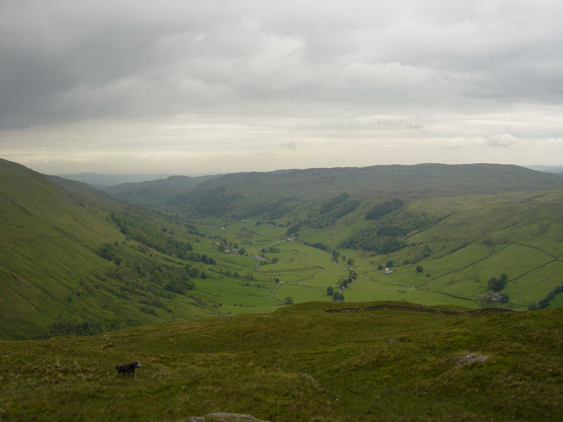 Longsleddale from Great Howe
