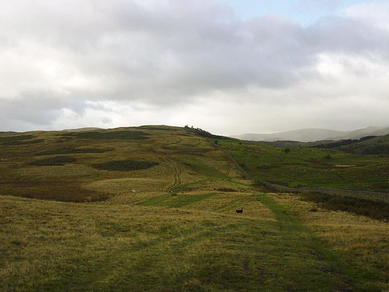 Harper Hills from Scalebarrow Knott