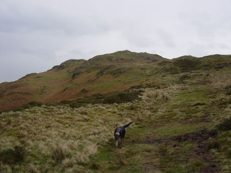 Heading for Hooker Crag