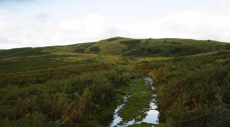 The approach to Scalebarrow Knott