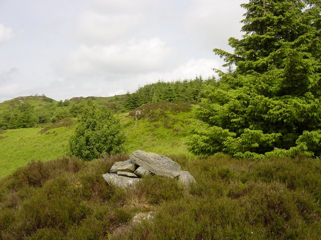 The first cairn looking to the highest summit, now screened by trees