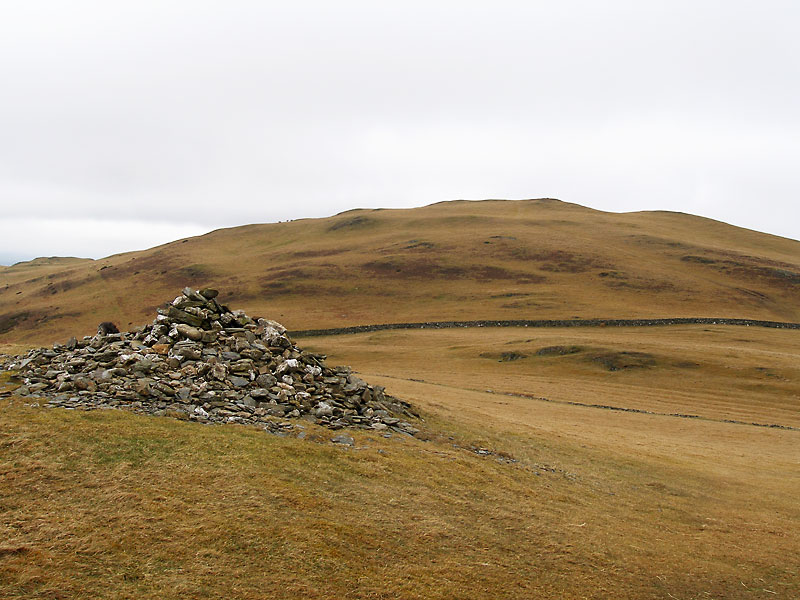Sale Fell from Rivings