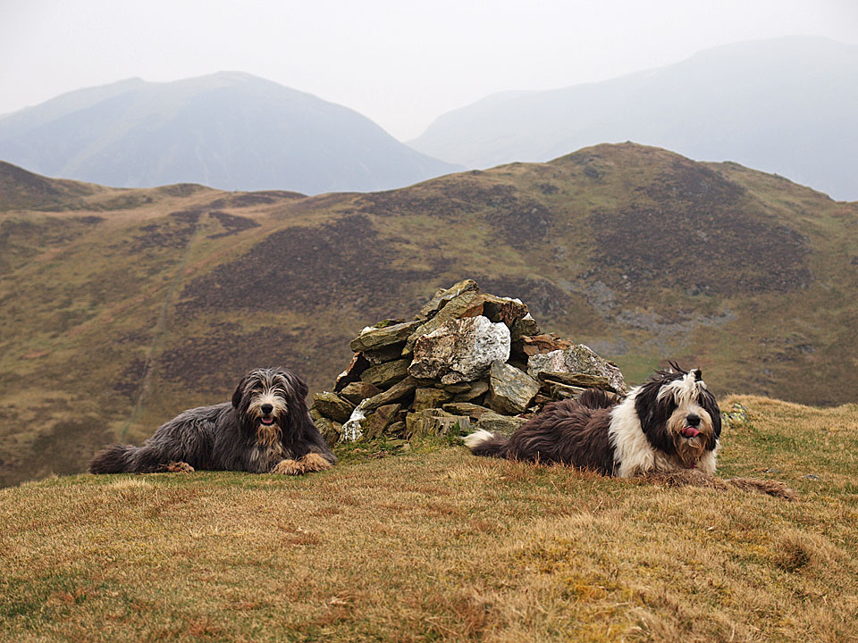 A rest on Darling Fell after the steep climb, beyond is Low Fell Whiteside and Grasmoor