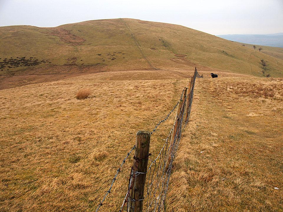 Smithy Fell looking to Fellbarrow