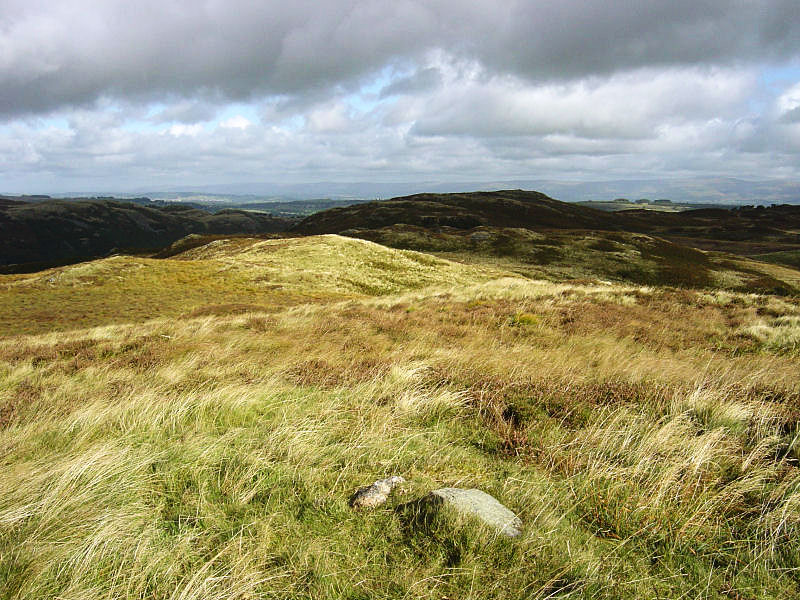 The ridge of Naddle Forest from Naddle High Forest