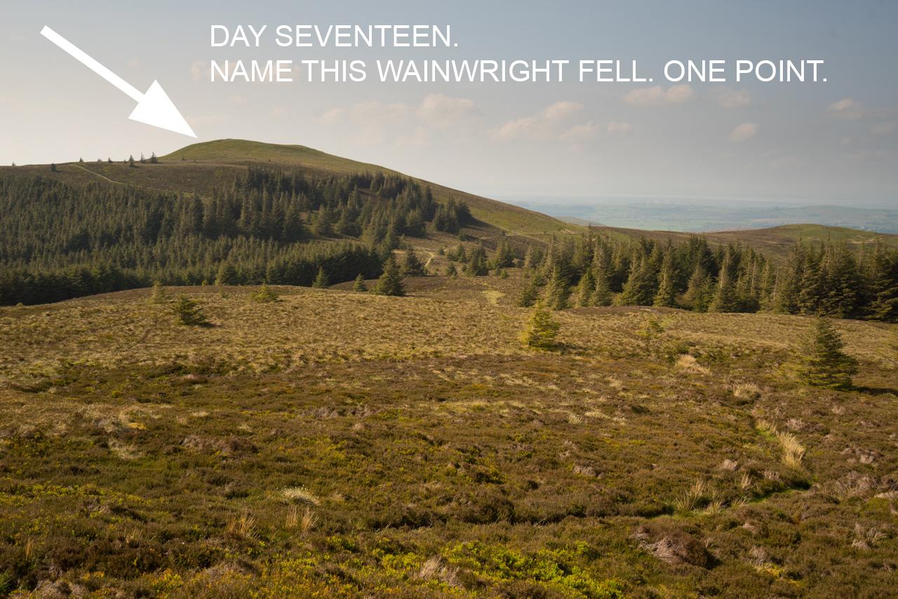 day-seventeen